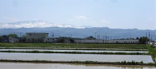 松文産業株式会社鶴岡工場