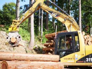 有限会社庄司林業
